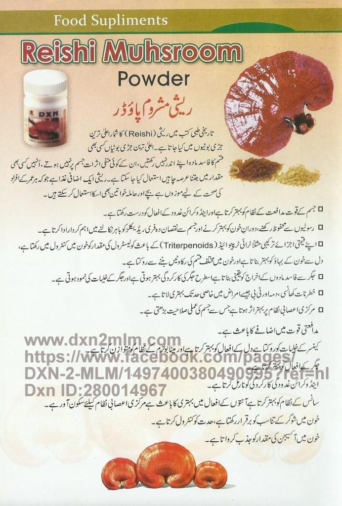 Reshi-Dxn2mlm